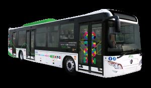 bus3porteEXPO